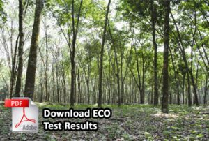 eco test result